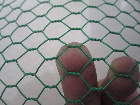 Pvc Coated Chicken Wire Confining Small Animals In A Cheap Way